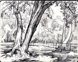 dog park sketch u2014 alyssa menold
