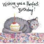 birthday cards with cats birthday card birthday cards with