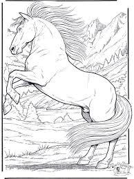 294 horse themed arts u0026 crafts images horses