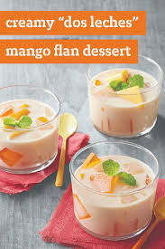 best 25 mango jello recipes ideas on pinterest mango panna