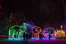 zoo lights stoneham coupons things to do in boston with kids this weekend dec 29th jan 1st