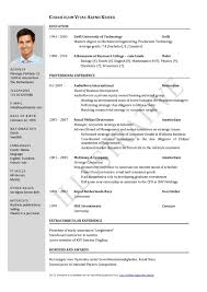 It Manager Resume Template It Resume Format Samples For Cv Naukri Com Mid Lev Peppapp