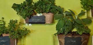 hanging kitchen herb garden