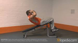Incline Decline Bench Exercises Bench Situps Bench Commercial Adjustable Sit Up Bench On Great