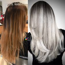 pravana silver hair color breaking the brass to silver ash behindthechair com