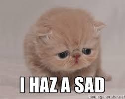 Sad Cat Memes - i haz a sad super sad cat ortayakarisik pinterest sad cat