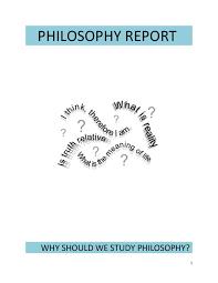resume exles modern sophistry philosophy meaning report final