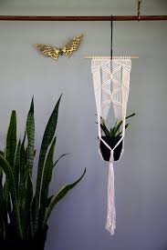 White Hanging Planter by Best 25 Indoor Hanging Planters Ideas On Pinterest Hung Vs
