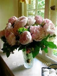 sarah bernhardt peony flower arrangement jpg format u003d1500w