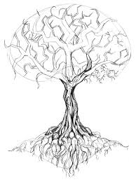 tree meaning stunning meaning of the hebrew name ornat is