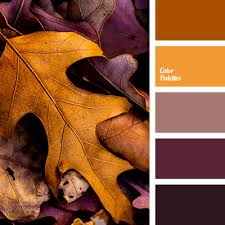 fall color pallette color palette 2595 color palette ideas