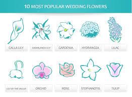 common wedding flowers popular wedding flowers the mba