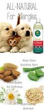 81 best dog pet supplies products animals images on pinterest