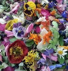 dried confetti flower flower petals biodegradable