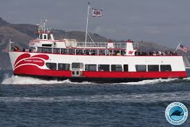 halloween boat party sf 2017 san francisco cruises 1 source for all cruise tickets