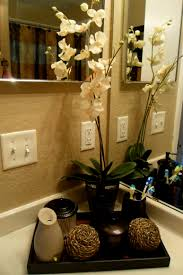bathroom awesome bathroom decor ideas pinterest with flower
