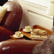 entretenir un canap en cuir entretenir un canapé en cuir canapé