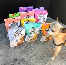 gourmet dog treats lindy s gourmet pet treats bakery is a home for homeless youth