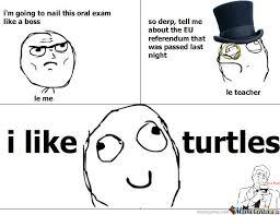 I Like Turtles Meme - i like turtles by luckycharmie meme center