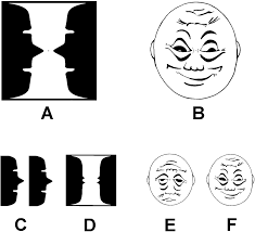 human gamma band activity and perception of a gestalt journal of