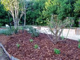 Pea Gravel Front Yard - garden head louisiana gardener