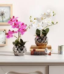 Tischdeko Esszimmertisch Esszimmer Dekoration Tolle Deko Online Kaufen Otto