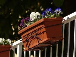 balkon blumenkasten blumenkasten kaufen die wichtigsten infos tipps