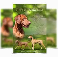 Dog House Kennel Plans Best Dog Kennel Floor Plans Lovely Pitbull