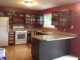 painted kitchens cabinets painting kitchen cabinets sometimes homemade