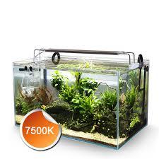 Tropical Aquatic Plants - 18w 20