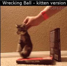 Wrecking Ball Meme - wrecking ball kitten version gif weknowmemes