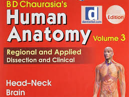 Human Physiology And Anatomy Pdf Bd Chaurasia Human Anatomy Volume 3 Pdf Human Anatomy Anatomy