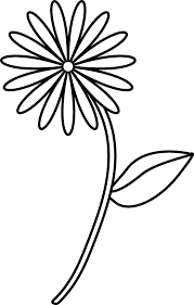 100 flower drawing picture flower page printable coloring