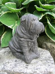 21 best shar pei images on shar pei puppies dogs and