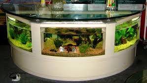 cuisine best aquarium design aquarium design decorating best