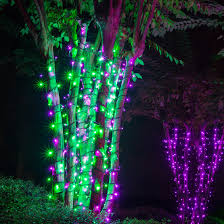 purple christmas lights 70 5mm purple green led lights 4 spacing black wire
