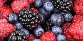 atkins diet phase 2 food list healthoria