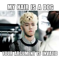 Exo Memes - exo memes k pop amino