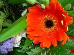 garden city florist christchurch 8041 fresh flower delivery by