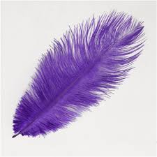 purple feather 14 16 inch 35 40 cm fluffy ostrich feather purple ostrich plume
