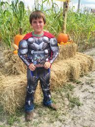 Avengers Halloween Costume Marvel U0027s U201cthe Avengers Age Ultron U201d Door Hanger Kids Stitch