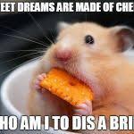 Cheese Meme - cheese mouse meme generator imgflip
