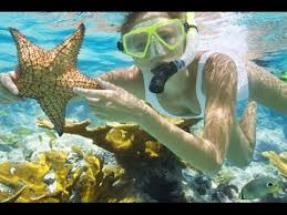 vacation places to go in jamaica top 10 places in jamaica