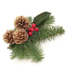 boscobel 10914865 christmas decoration of holly berry and blue