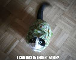 What Are Internet Memes - what are internet memes and why did they become so popular diary