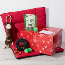 festive gifts for dogs dog christmas presents dogs