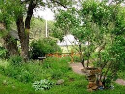 best 25 small english garden ideas on pinterest cottage gardens