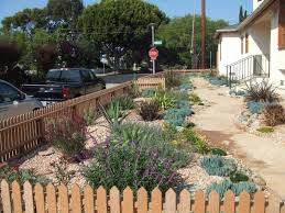 drought smart 7 water saving landscaping tips about pv palos