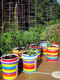 5 gallon bucket garden garden design pictures