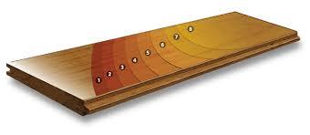 prefinish hardwood flooring layers diagram